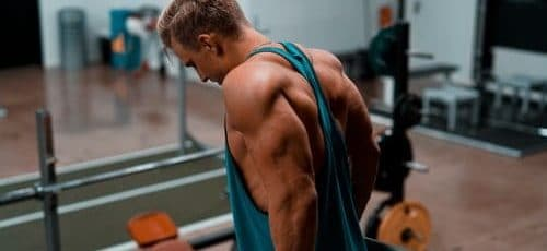 Tricep workouts for strength