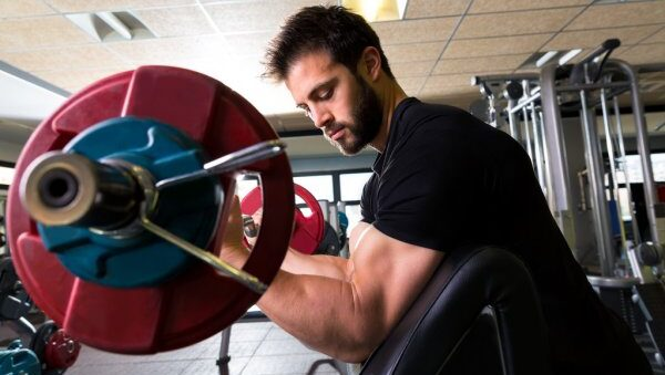 Bicep Training Guide